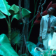 Soudain l'été dernier, Tennessee Williams, Stéphane Braunschweig, Odéon Théâtre de l'Europe, Elizabeth Carecchio