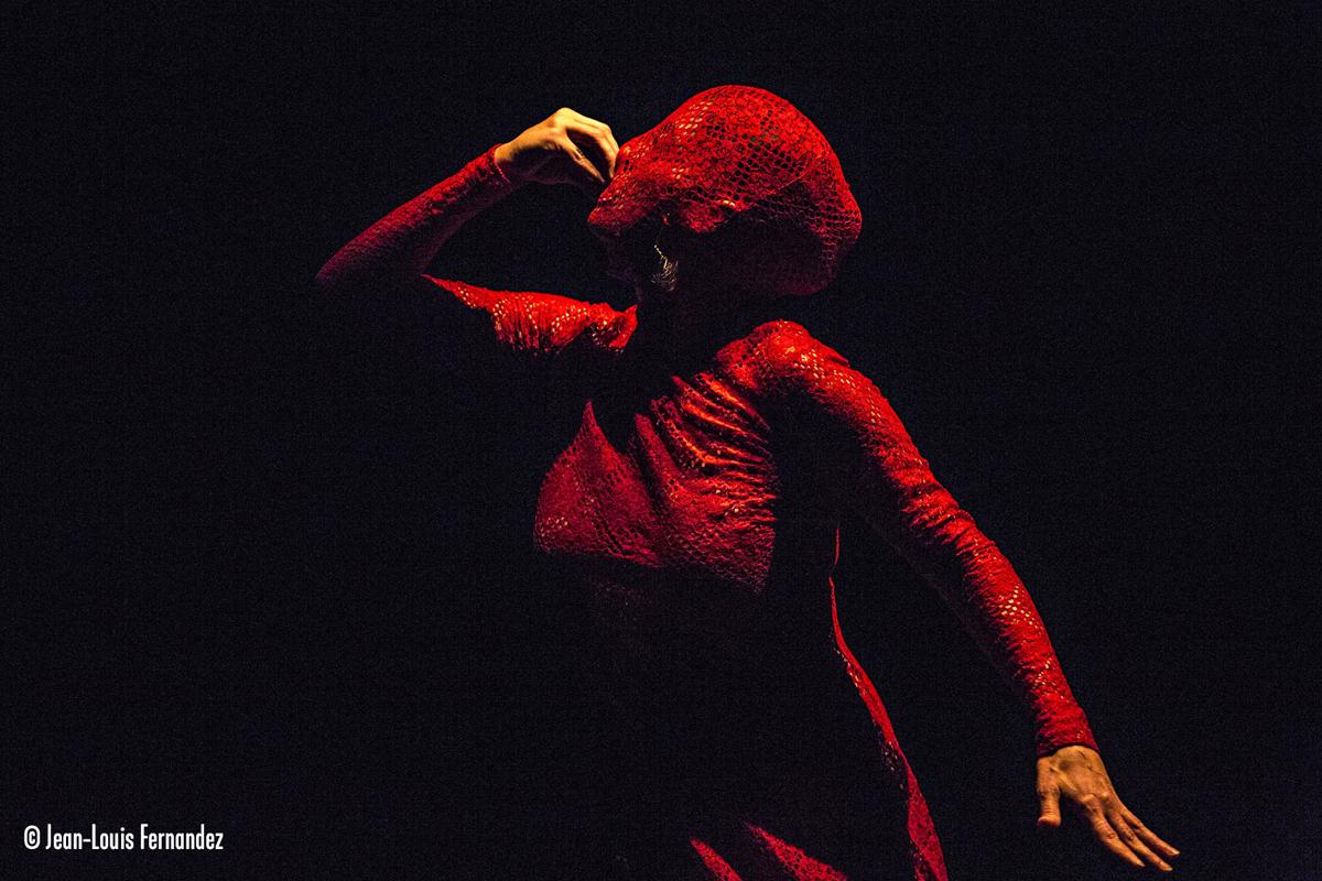 Dévaste-moi, Emmanuelle Laborit, © Jean-Louis Fernandez